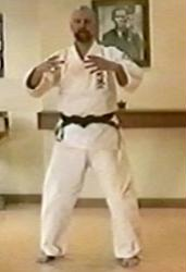 David Mott's Advanced Uechi-ryu Body Mechanics